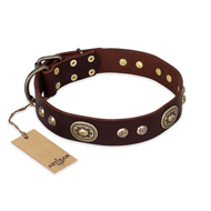 """Breath of Elegance"" FDT Artisan Decorated with Plates Brown Leather Newfoundland Collar"