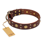 """Caprice of Fashion"" FDT Artisan Brown Leather Newfoundland Collar with Round Decorations"