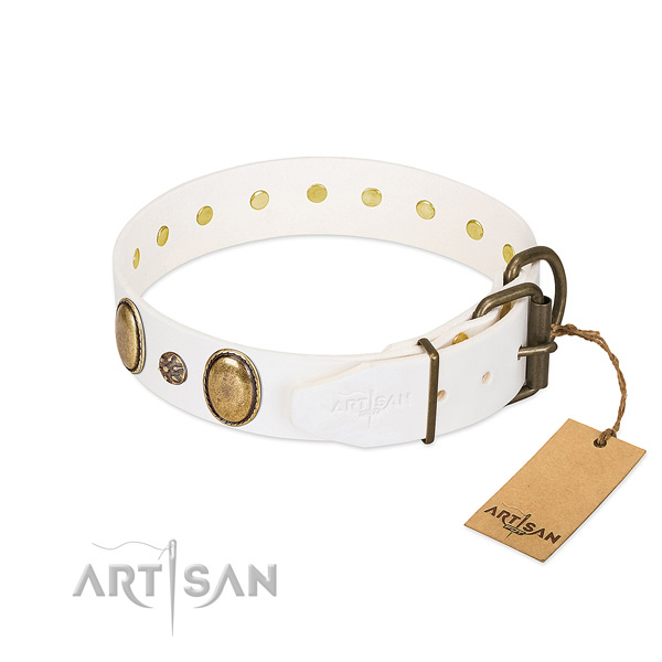 Walking gentle to touch leather dog collar with decorations