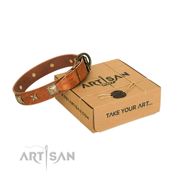 Incredible genuine leather collar for your impressive dog