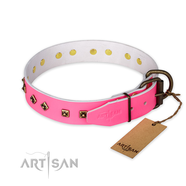Corrosion proof fittings on full grain genuine leather collar for walking your pet