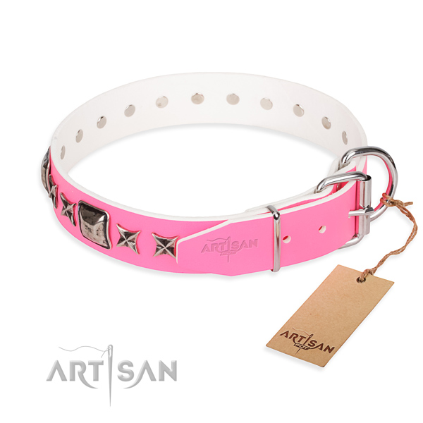 Best quality studded dog collar of full grain leather