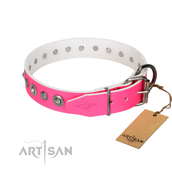 High quality leather dog collar with extraordinary adornments