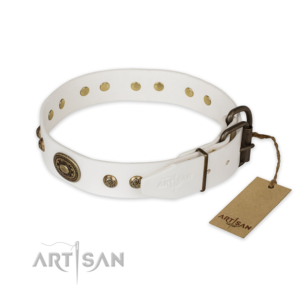 Durable D-ring on leather collar for everyday walking your four-legged friend