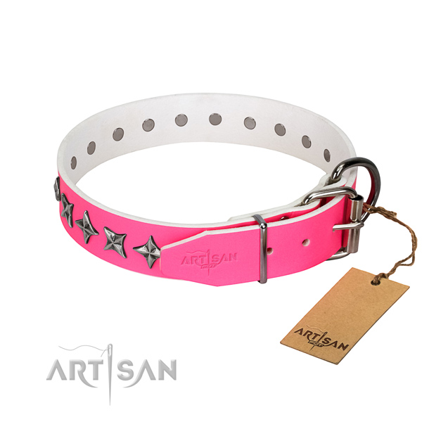 High quality leather dog collar with exceptional studs