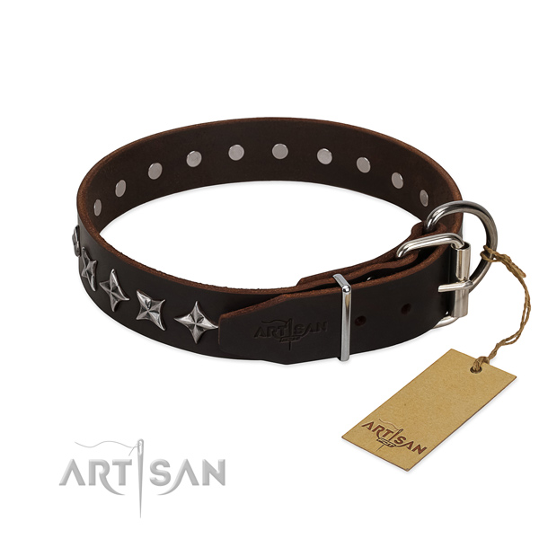 Comfy wearing studded dog collar of durable natural leather