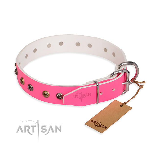 Full grain natural leather dog collar with stunning corrosion proof adornments