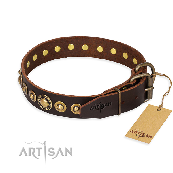 High quality full grain natural leather dog collar crafted for stylish walking