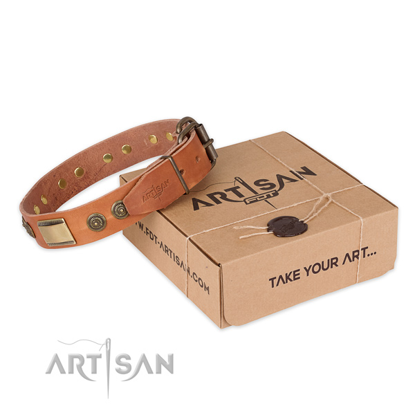 Rust-proof fittings on full grain leather dog collar for walking