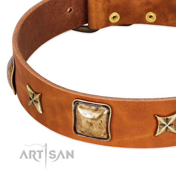 Rust-proof decorations on full grain genuine leather dog collar for your doggie