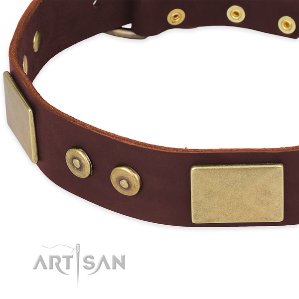 Leather dog collar with embellishments for comfy wearing