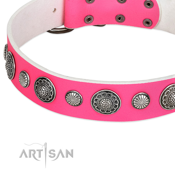 Full grain natural leather collar with corrosion resistant fittings for your stylish dog