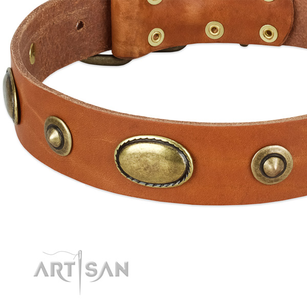 Corrosion proof buckle on full grain genuine leather dog collar for your dog