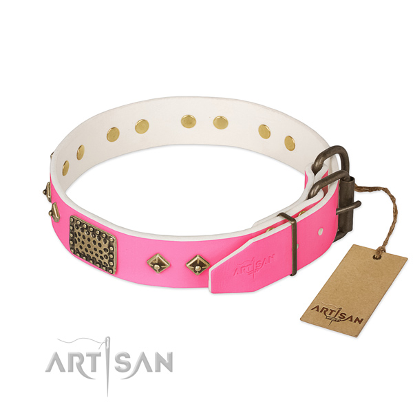 Corrosion resistant buckle on handy use dog collar