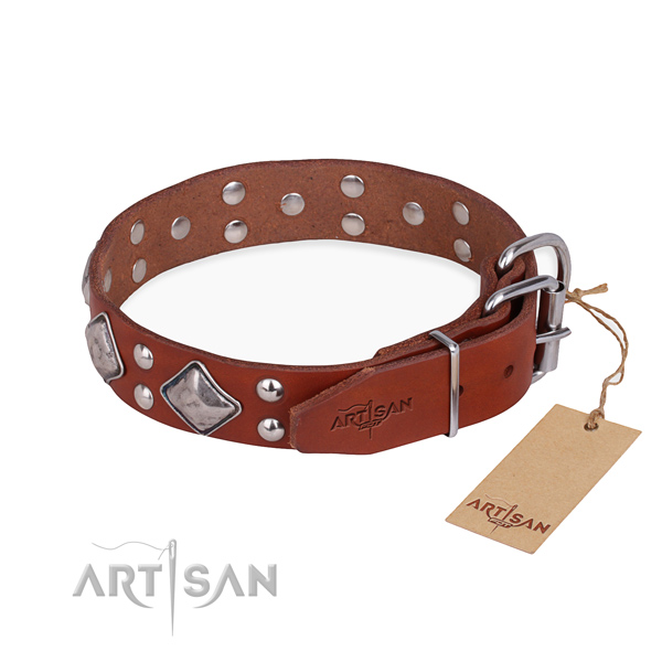 Leather dog collar with impressive rust-proof studs