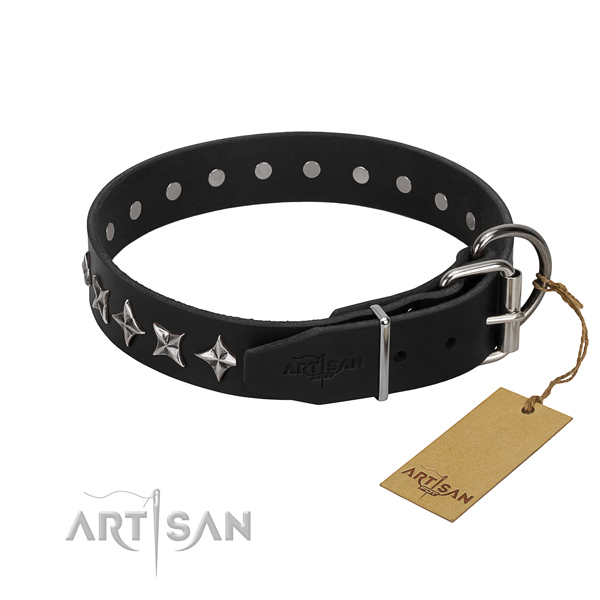 Fancy walking studded dog collar of best quality full grain natural leather