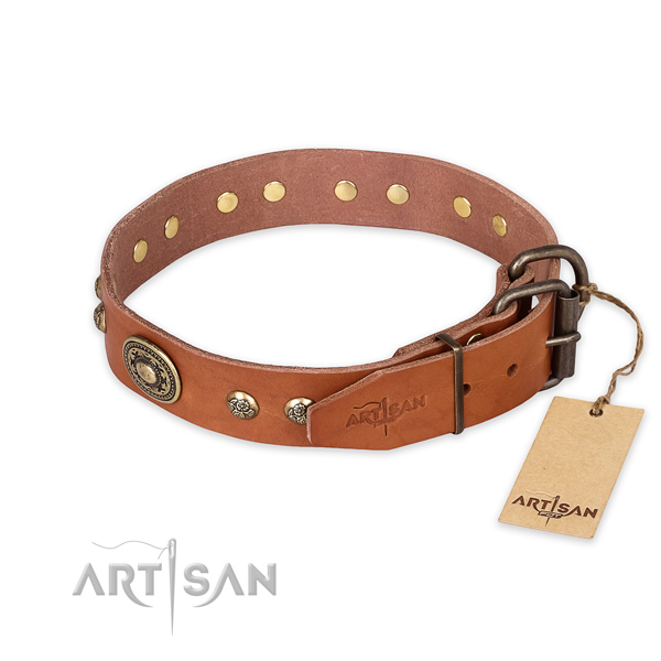 Rust-proof traditional buckle on natural leather collar for basic training your pet