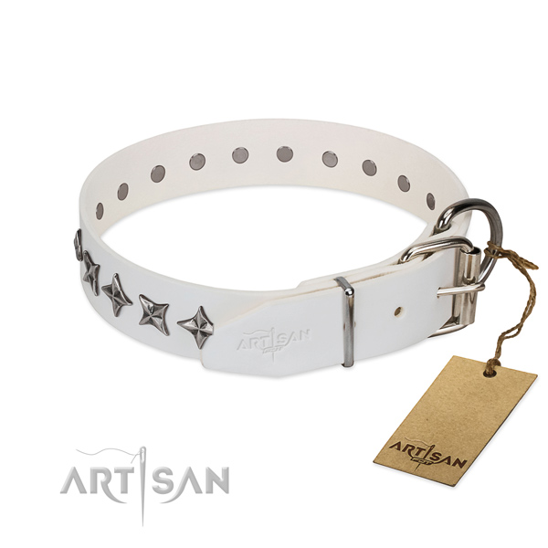 Strong natural leather dog collar with inimitable adornments