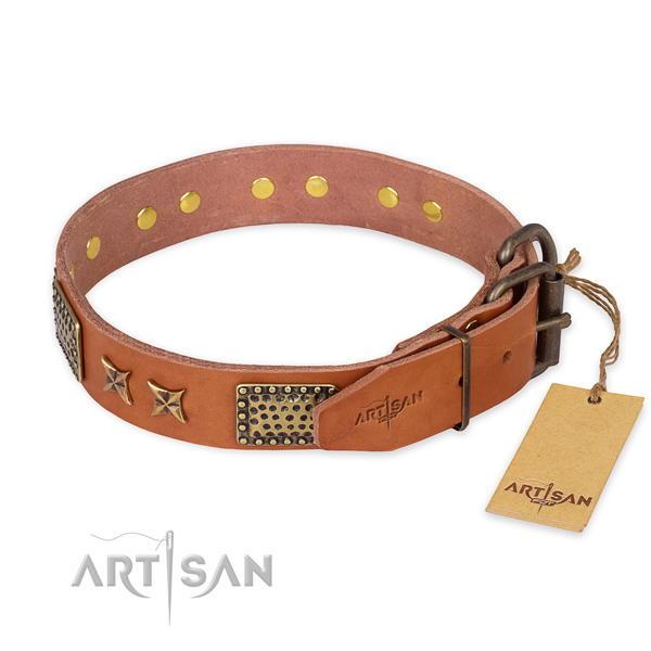 Rust resistant buckle on full grain leather collar for your stylish doggie