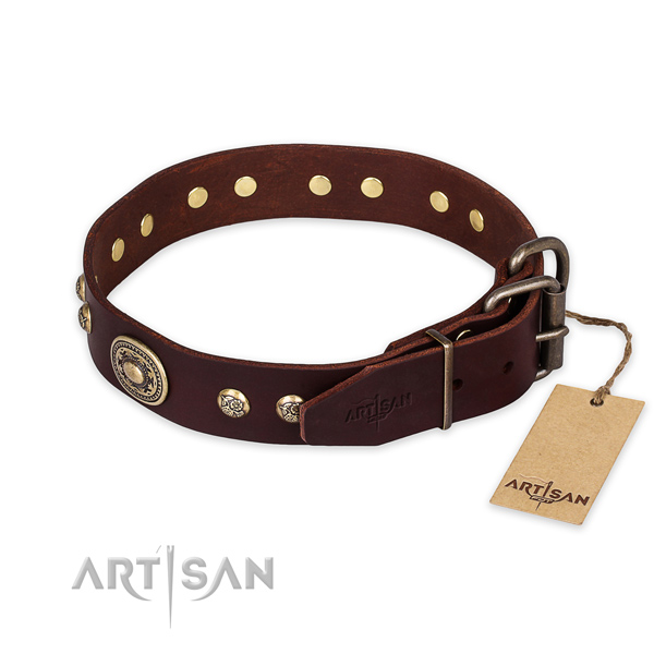 Rust resistant traditional buckle on full grain leather collar for walking your dog
