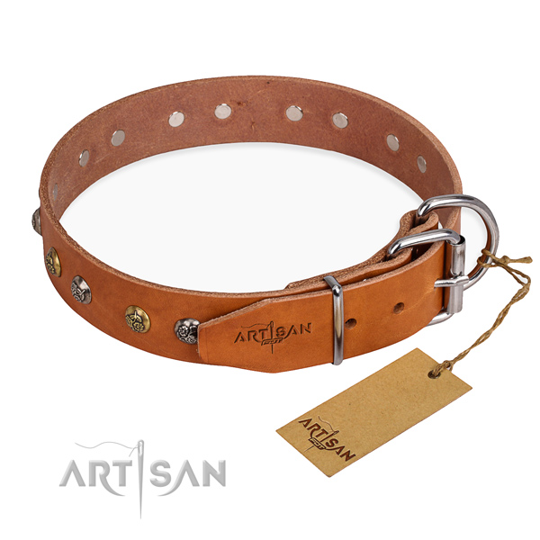 Durable full grain leather dog collar made for everyday use