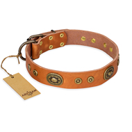 """Dandy Pet"" FDT Artisan Handcrafted Tan Leather Newfoundland Collar"