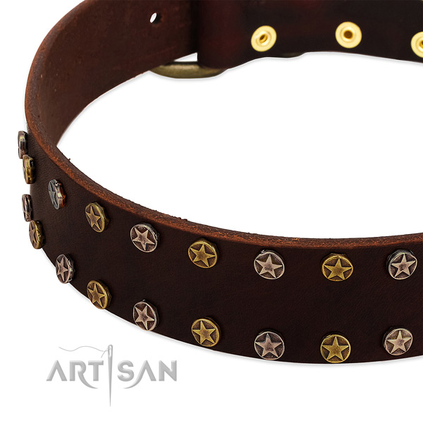 Easy wearing natural leather dog collar with top notch adornments