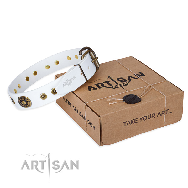 Full grain natural leather dog collar made of reliable material with reliable D-ring