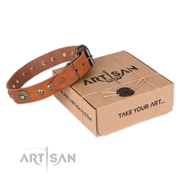 Reliable hardware on full grain genuine leather dog collar for daily walking