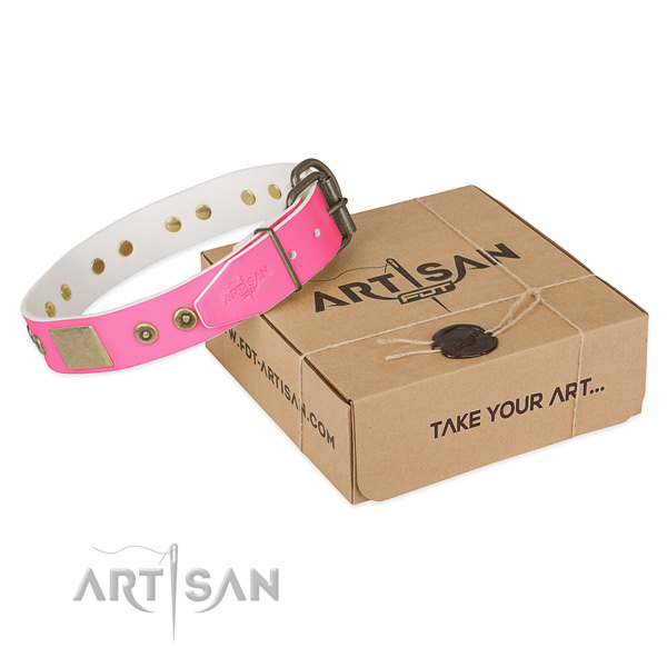 Durable adornments on dog collar for daily walking