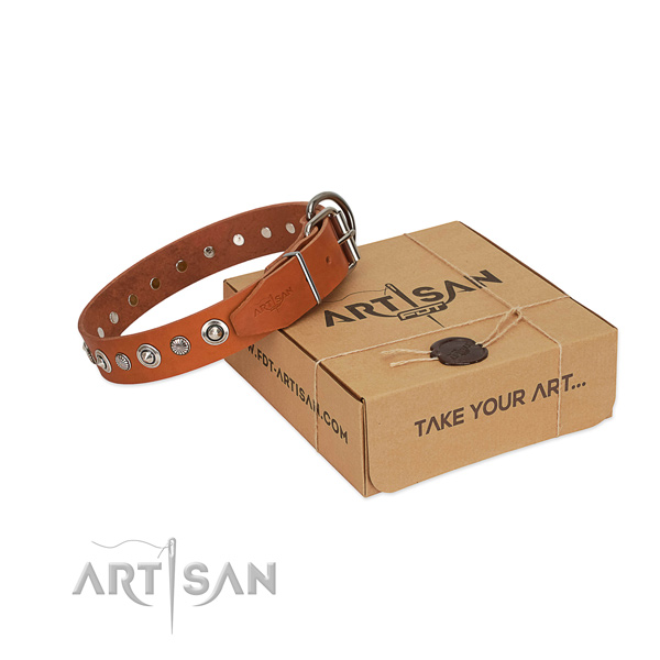 Finest quality full grain natural leather dog collar with awesome embellishments