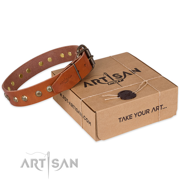 Durable buckle on full grain natural leather collar for your beautiful doggie
