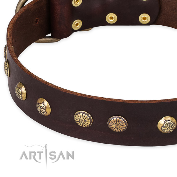 Natural genuine leather collar with durable traditional buckle for your stylish dog