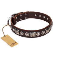 """Pierian spring"" FDT Artisan Brown Leather Newfoundland Collar with Silvery Decorations"