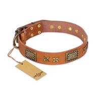 """Cosmic Traveller"" FDT Artisan Adorned Leather Newfoundland Collar with Old Bronze-Plated Stars and Plates"