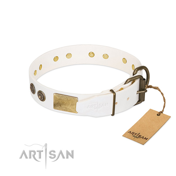 Reliable traditional buckle on full grain leather collar for daily walking your pet