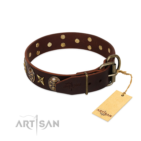 Genuine leather dog collar with reliable hardware and embellishments