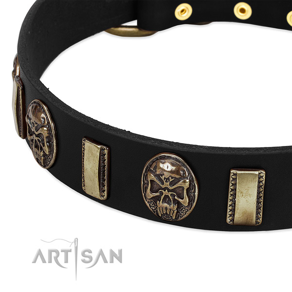 Rust resistant embellishments on genuine leather dog collar for your doggie