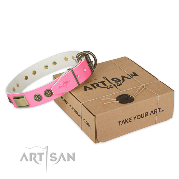 Corrosion proof fittings on dog collar for walking