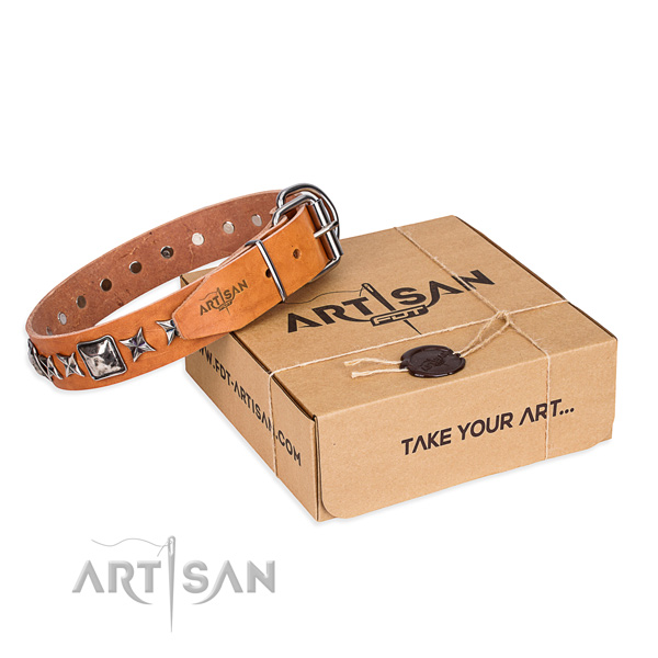 Basic training dog collar of high quality full grain leather with embellishments