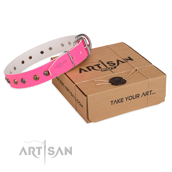 Daily walking dog collar with Stylish corrosion proof decorations