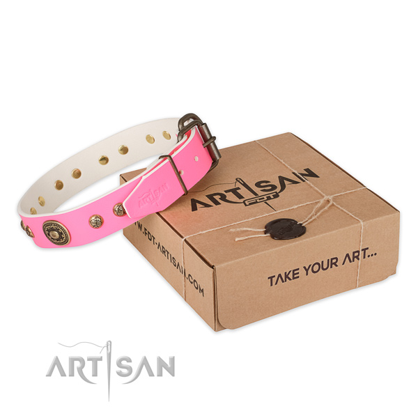 Reliable fittings on natural genuine leather dog collar for walking
