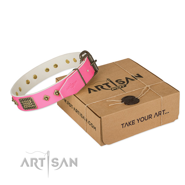 Reliable decorations on dog collar for everyday walking