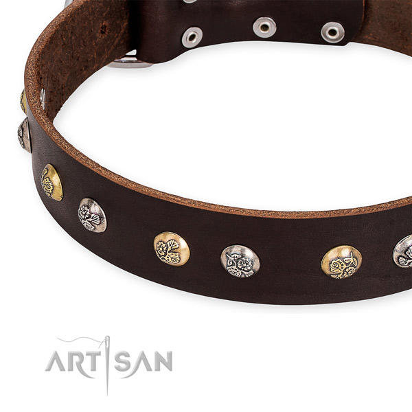 Full grain genuine leather dog collar with incredible strong adornments