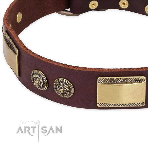 Stylish full grain natural leather collar for your beautiful dog