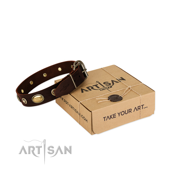 Strong adornments on natural leather dog collar for your canine