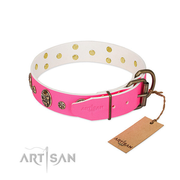 Rust resistant hardware on full grain natural leather collar for everyday walking your dog