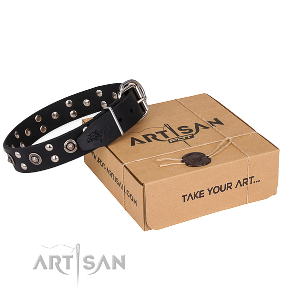 Stylish walking dog collar with Exceptional reliable adornments