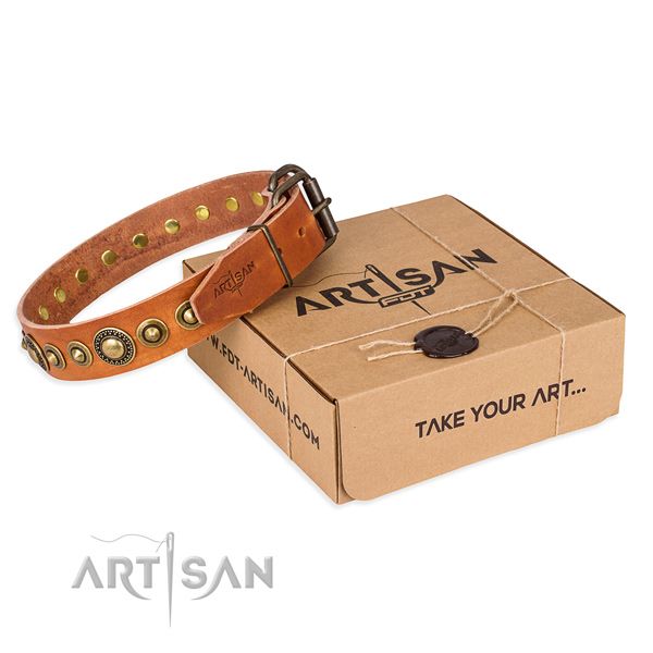 Flexible full grain natural leather dog collar created for everyday use