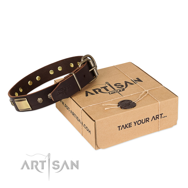 Incredible leather collar for your stylish pet